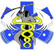 EMS Angels logo