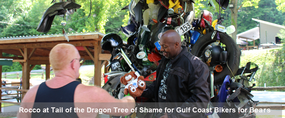 Rocco at Tail of the Dragon Tree of Shame for Gulf Coast Bikers for Bears
